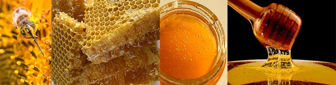 miels et pâtes à tartiner